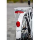 Электрический велосипед NAKTO Classic Breeze 250 Вт , 36V8ah Литиевая батарея ,26 дюймов
